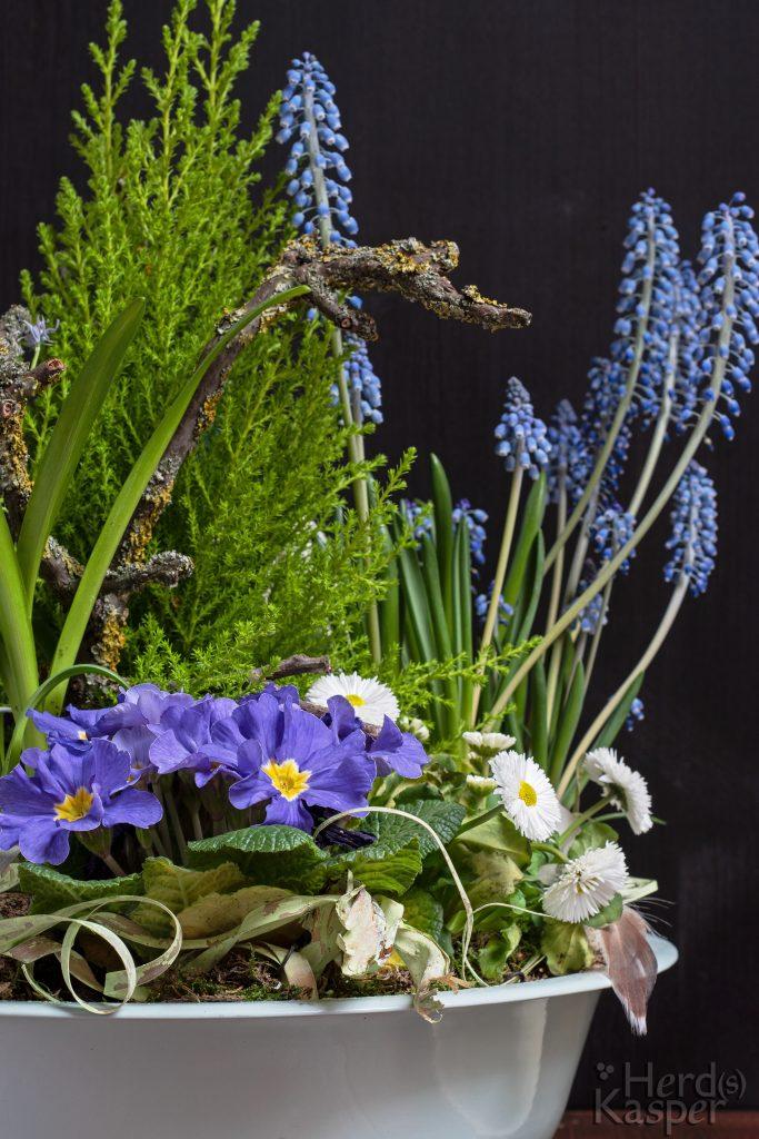 Langsam wird es Frühling! Gesteck mit Frühlingsblumen.